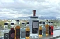 Casey,Bryce and a lot of Icelandic vodka on their Honeymoon.  Reykjavik, Iceland